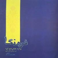 فرهنگ واژههای همآوا در زبان فارسی
