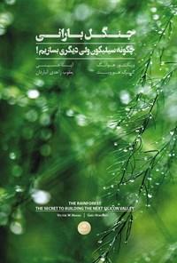 جنگل بارانی